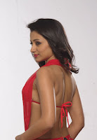 http://spicy-jet.blogspot.com/2013/01/vishal-and-trisha-in-samar-movie-hot.html