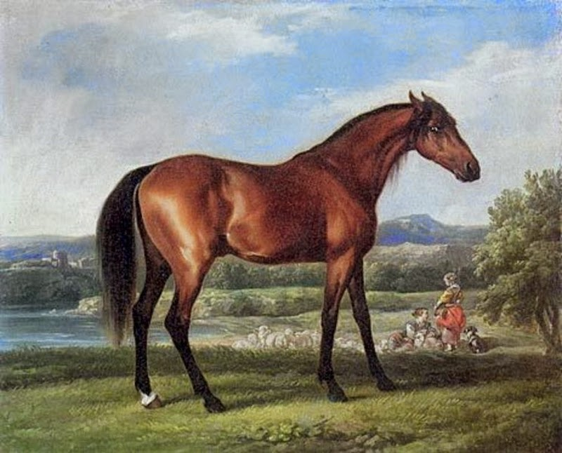 D.W.C. Horses - George Stubbs - DANCE WITH COLORS