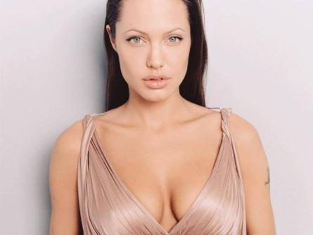 angelina jolie wallpaper bikini. Angelina Jolie hot images,