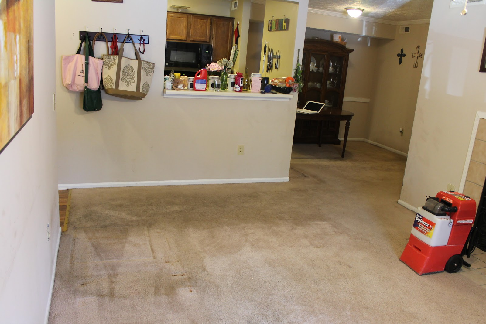 Captivating Carpet Cleaning Review (Rug Doctor)