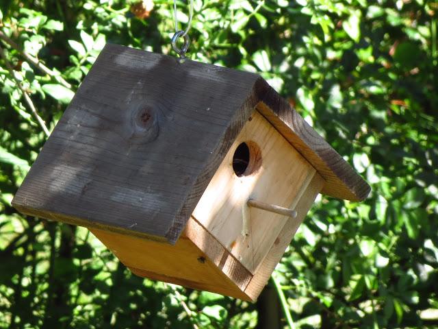 house wren house closeup