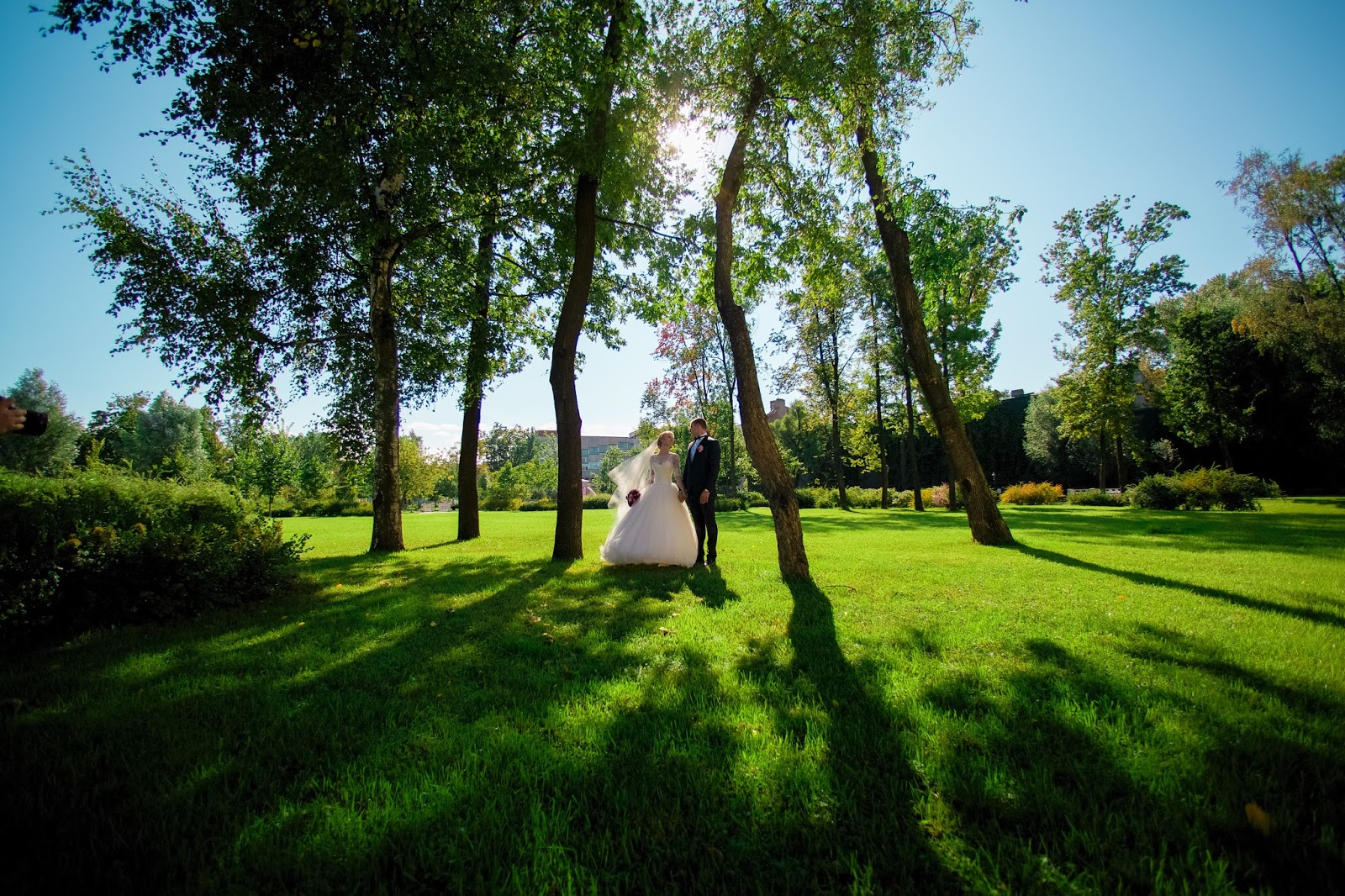 жених с невестой на прогулке по парку