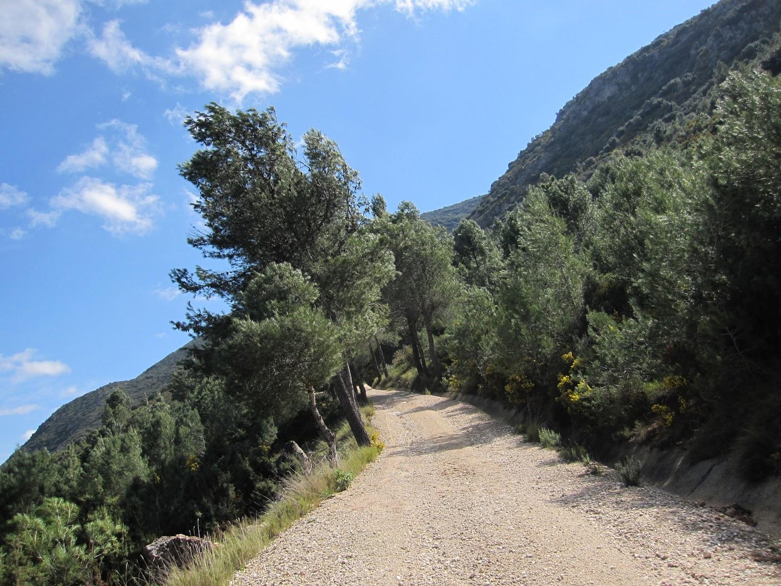 Camí de la font Serquera