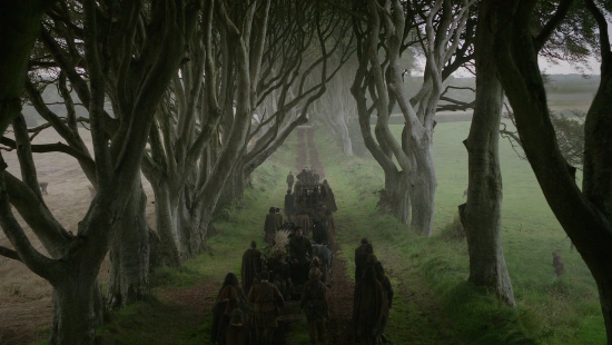 the dark hedges antrim ireland game of thrones