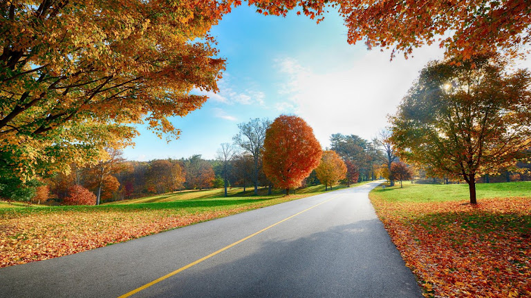 Road HD Wallpaper 5