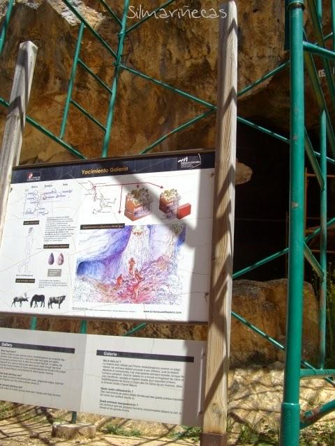 Yacimiento Galería Atapuerca