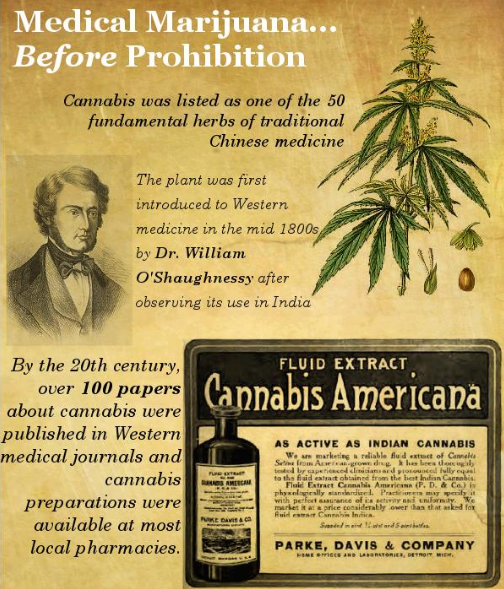 the history of drug prohibition Drug prohibition in zimbabwe - for the last half century, governments all over the world have been involved in a gratuitous war against drugs, its users, producers and distributors, with the intention of creating a drug free world.