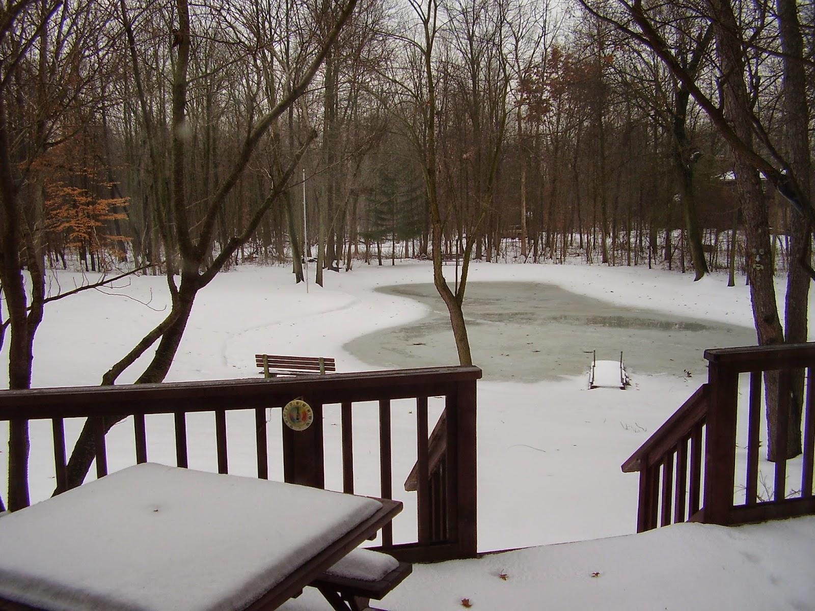 Back Yard Pond Winter 2000s Rochester MI