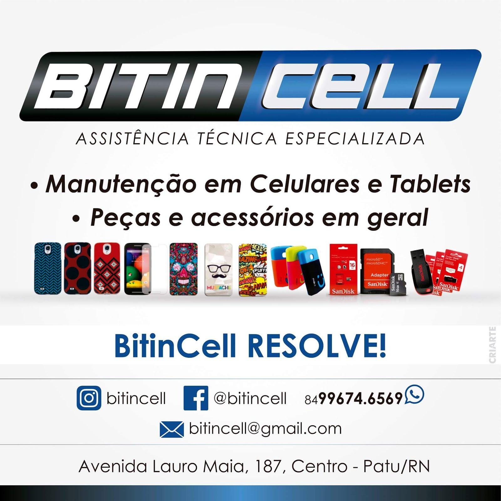 BitinCell
