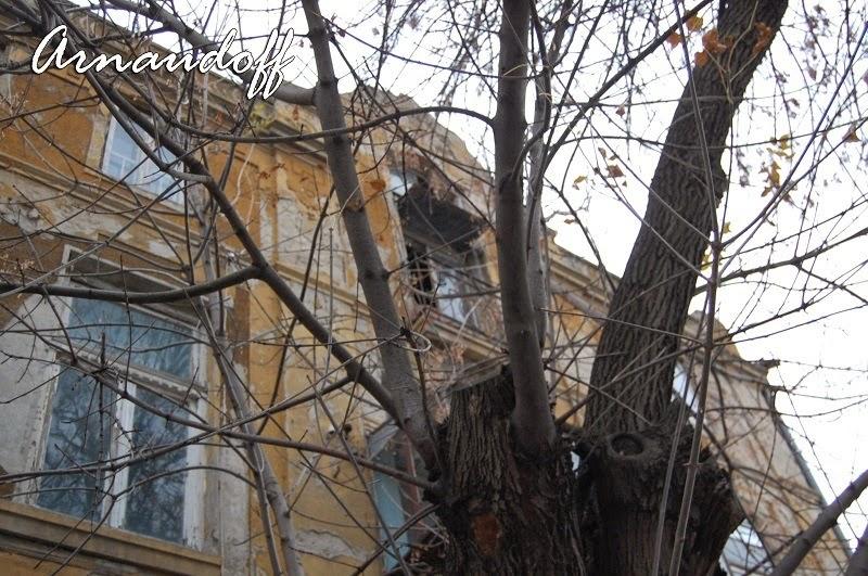 Къща с дърво отпред