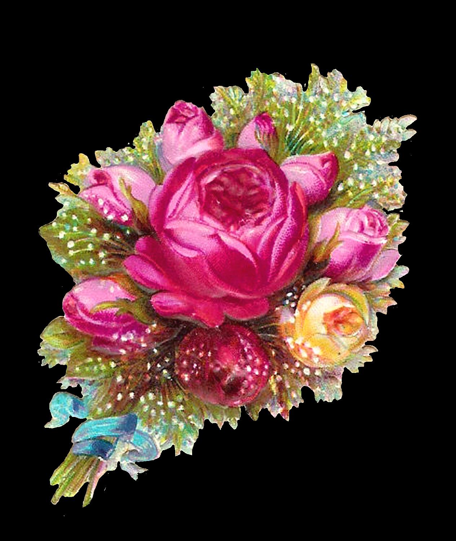 rose flowers digital design - photo #19