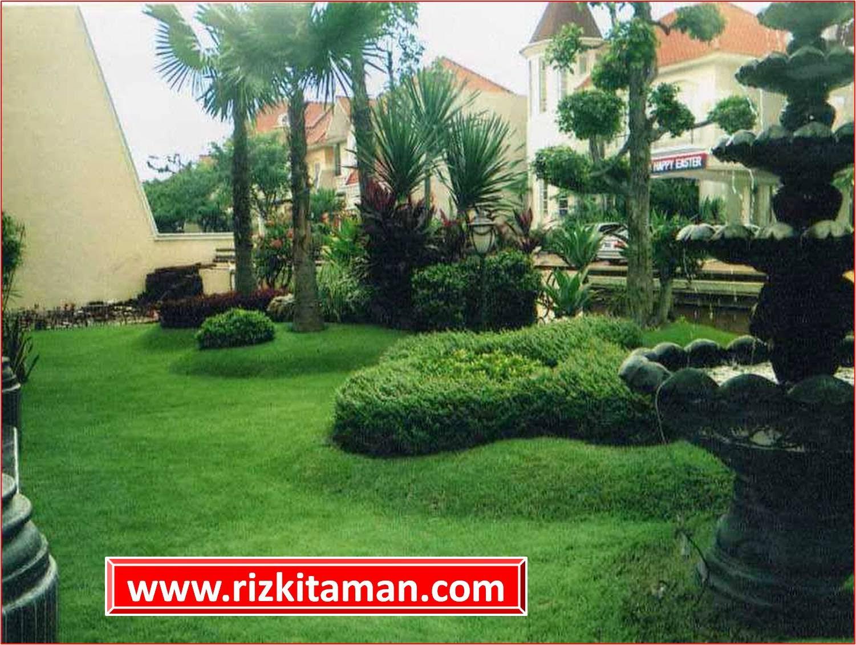 Taman rumahan | jasa esain taman minimalis dan penanaman rumput