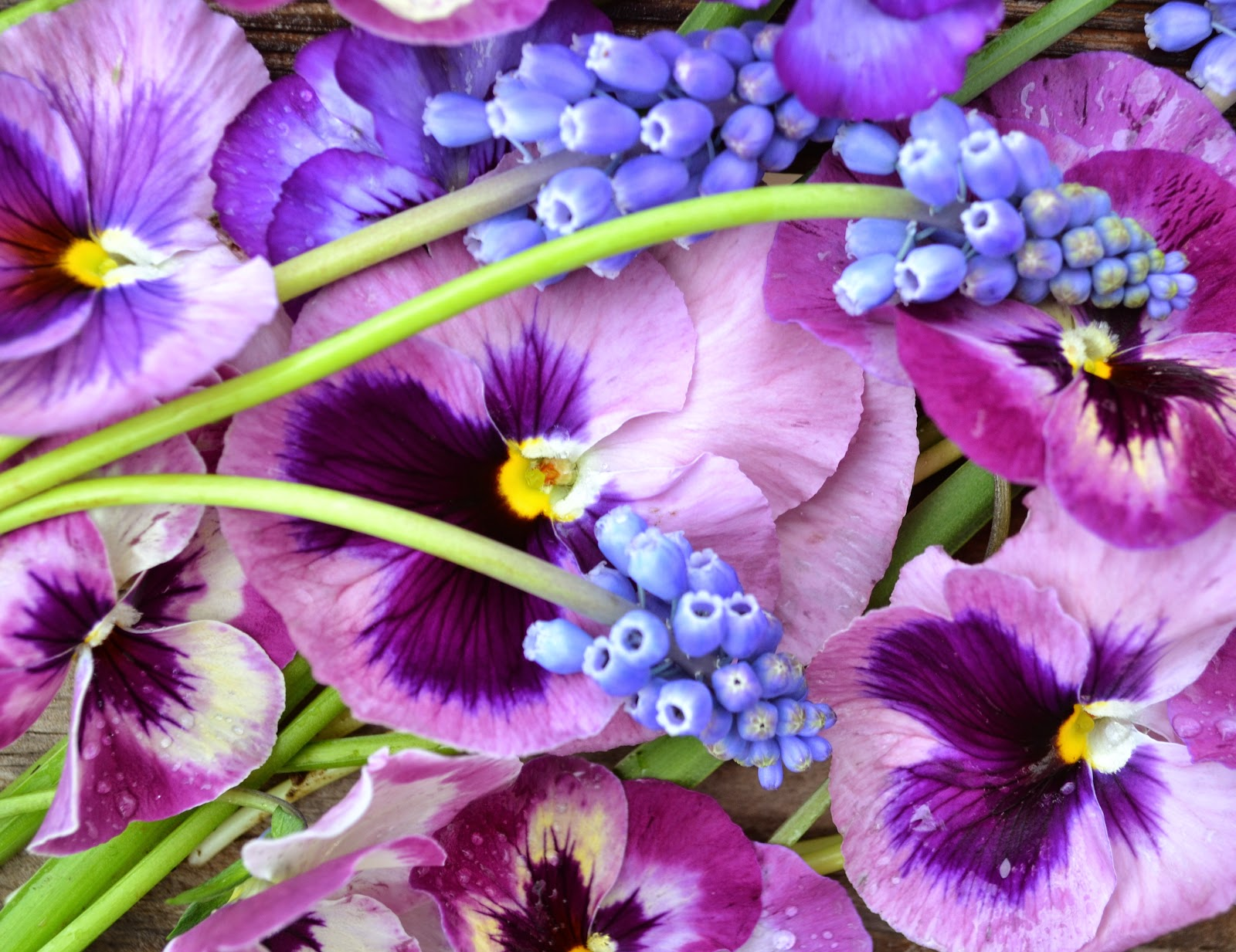Wedding Flowers From Springwell Purple And Blue Pansies And Muscari