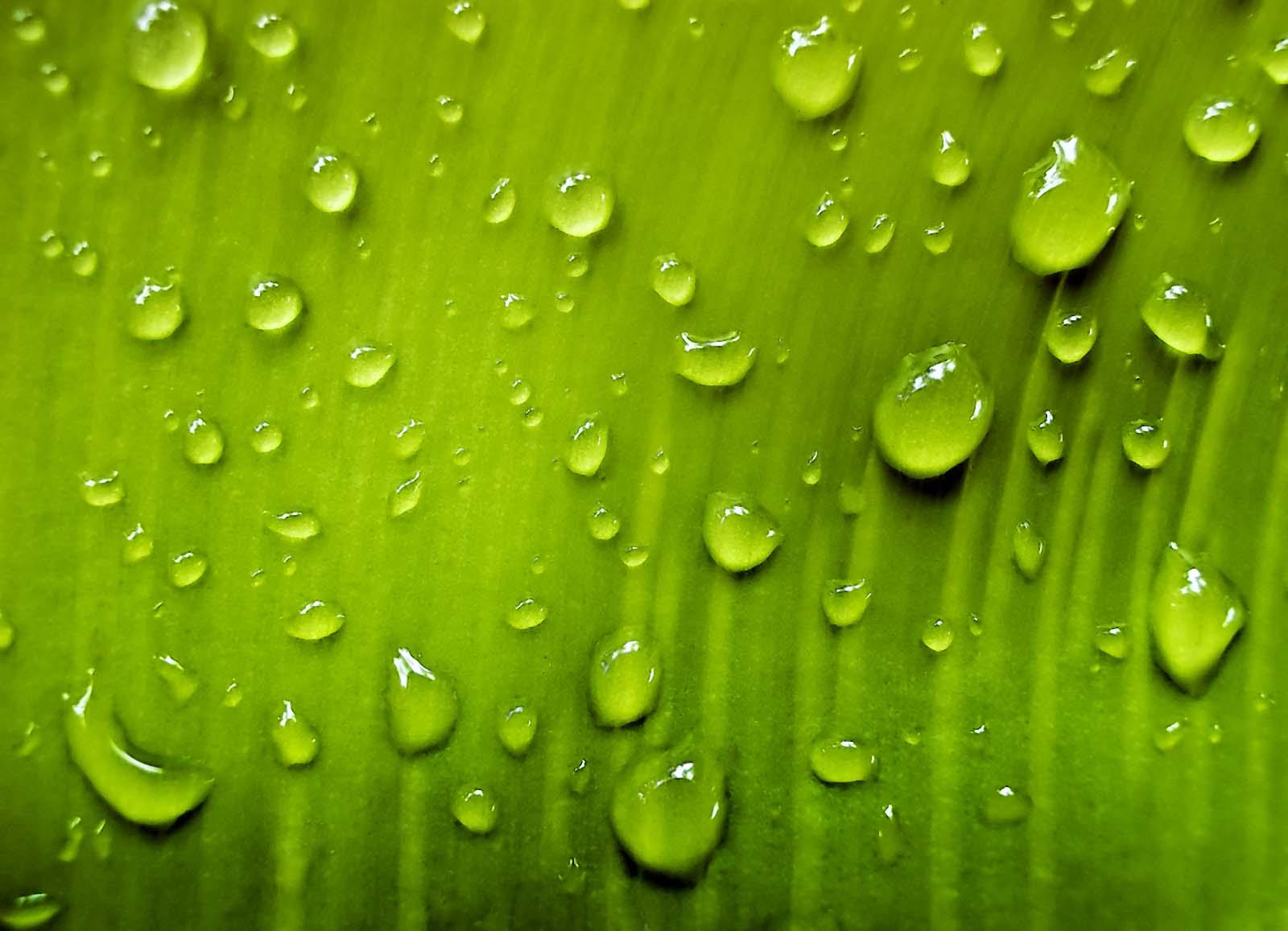 http://2.bp.blogspot.com/-QZ7EOjgl18I/TfOVIB3LH2I/AAAAAAAAB-Y/j3CBIHTx4qQ/s1600/Water%20Drop%209.jpg