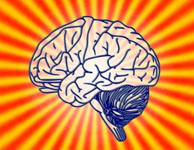 Cérebro feminino pode sofrer alteração permanente com o uso de drogas ilícitas
