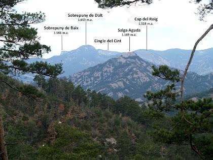 Panoràmica de la Salga Aguda de la Serra de Picancel i del Sobrepuny de la Serra de Catllaràs, des de la pista del Serrat de les Tombes