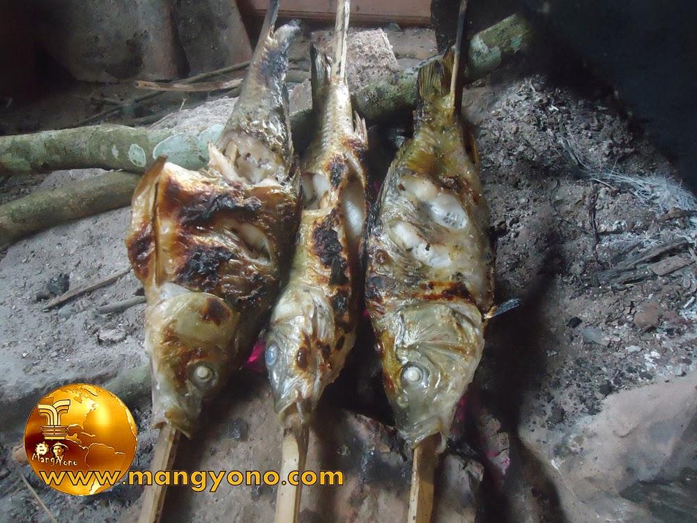 Cara membakar ikan