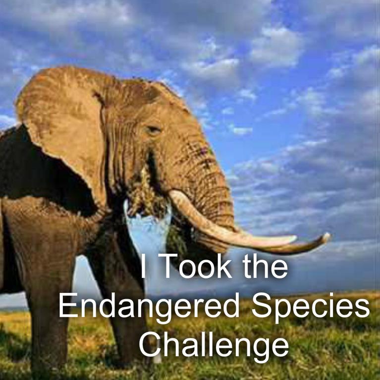 Endangered Species Challenge