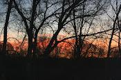 sunrise at the homestead