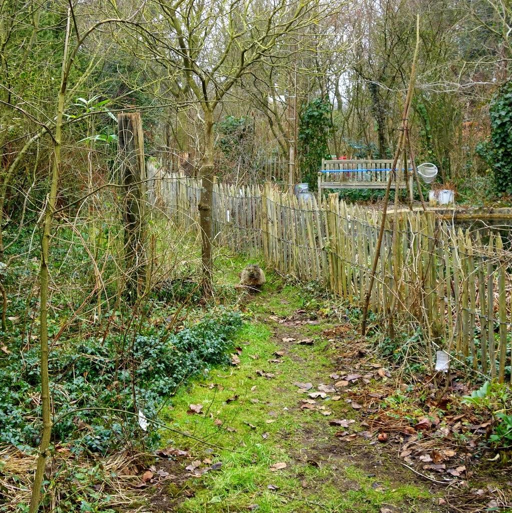 ecologische tuin © ludo rutten