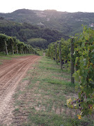 We, however, would go to Cascina Francia, where a walk reminded us how big .