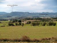 Vista cap a migdia des de la Plana dels Ametllers, on destaca per sobre de tot la Tossa de Montbui