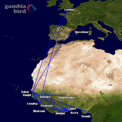 Gambia Bird's updated network map