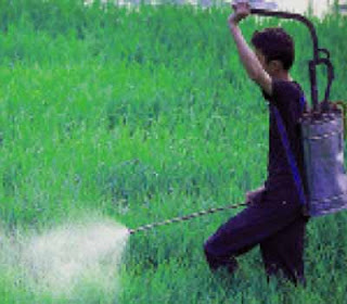 Sri Lanka banned the use of 3 verities of agro chemicals