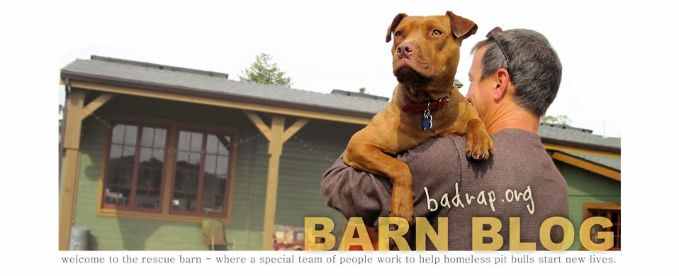 BADRAP Barn Blog