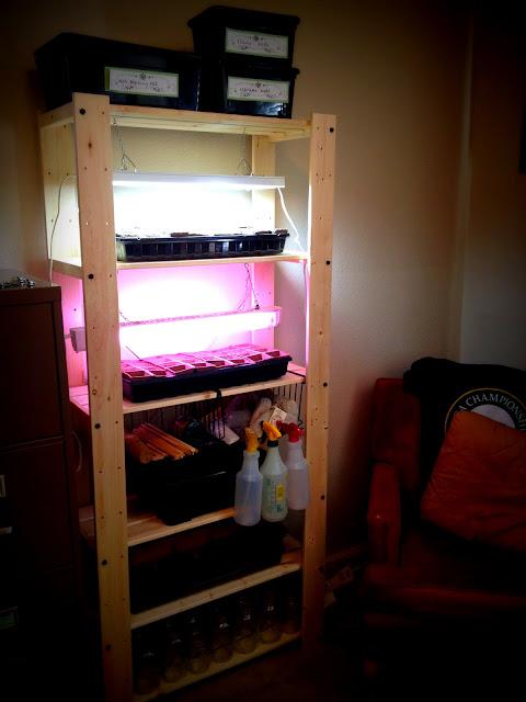 The $29.99 IKEA Seed Starting Rack