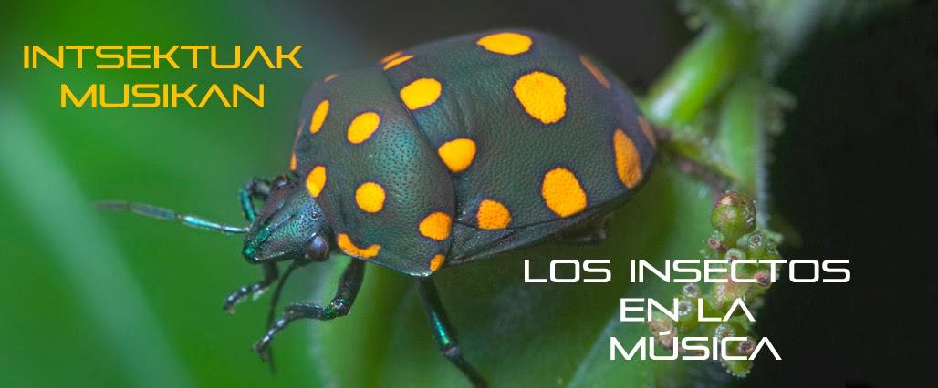 Los insectos en la música /  Intsektuak musikan
