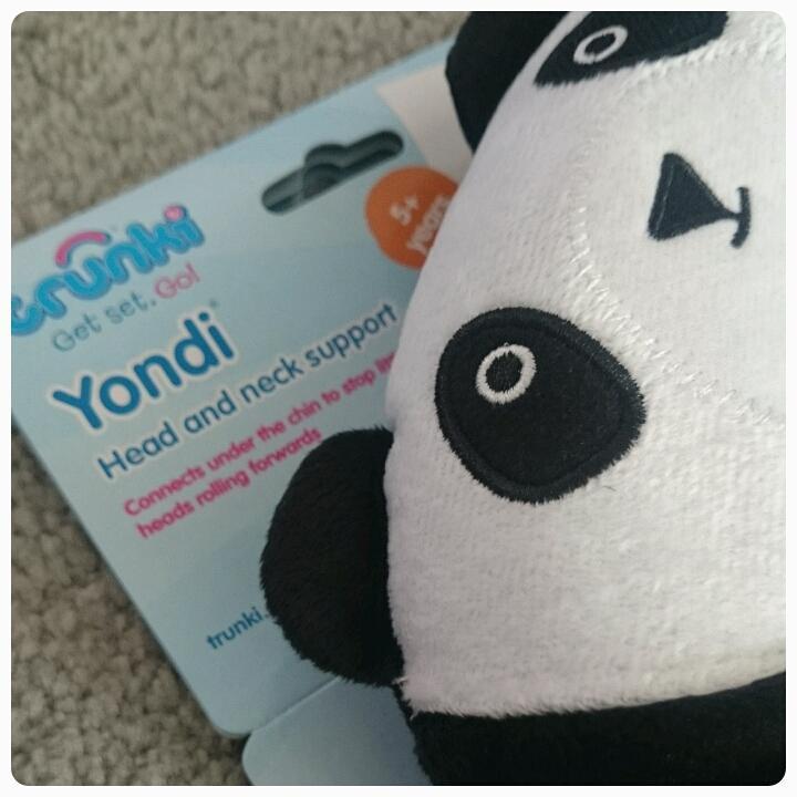 pablo panda trunki yondi