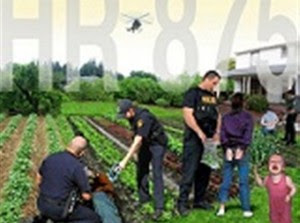 Απαγορεύτηκε η ελεύθερη χρήση σπόρων στη Γαλλία