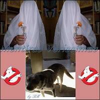 Uma história de arrepiar. O narrador jura que é verdade que escutou o fantasma da tia mandar o cãozinho ficar quieto e o cão obedeceu