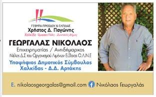 Νικόλαος Γεωργαλάς υποψήφιος δημοτικός σύμβουλος Δήμου Χαλκιδέων-Δ.Δ. Αρτάκης