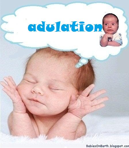 adulation