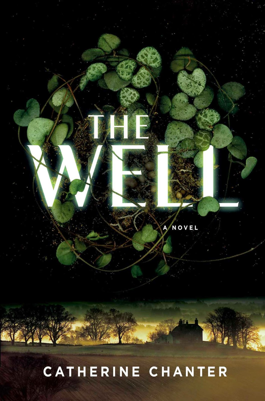 https://www.goodreads.com/book/show/22609511-the-well?from_search=true