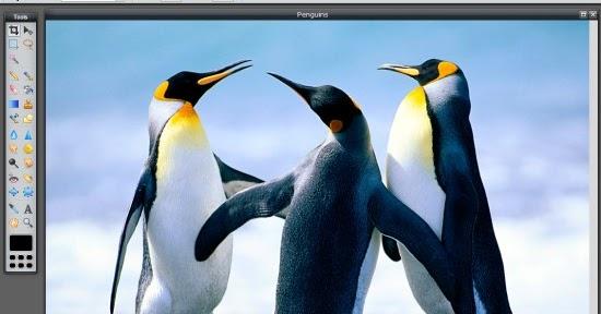 Modificare foto e immagini online gratis 10 editor per for Effetti foto online