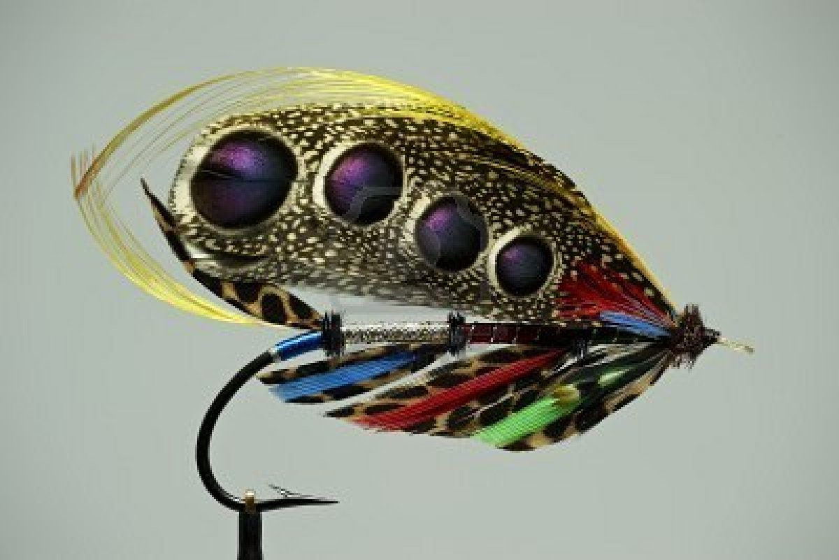 Joey holder nudibranch for Fly fishing lures