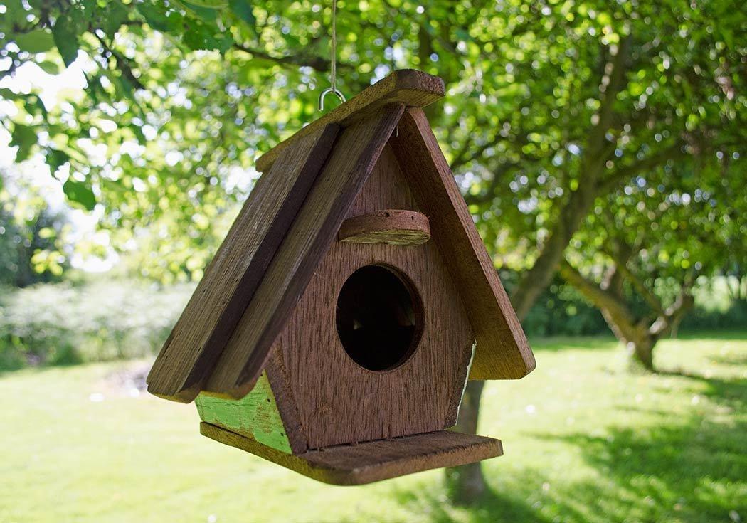 Bien connu Casetta per uccellini - Soluzioni casa VV46