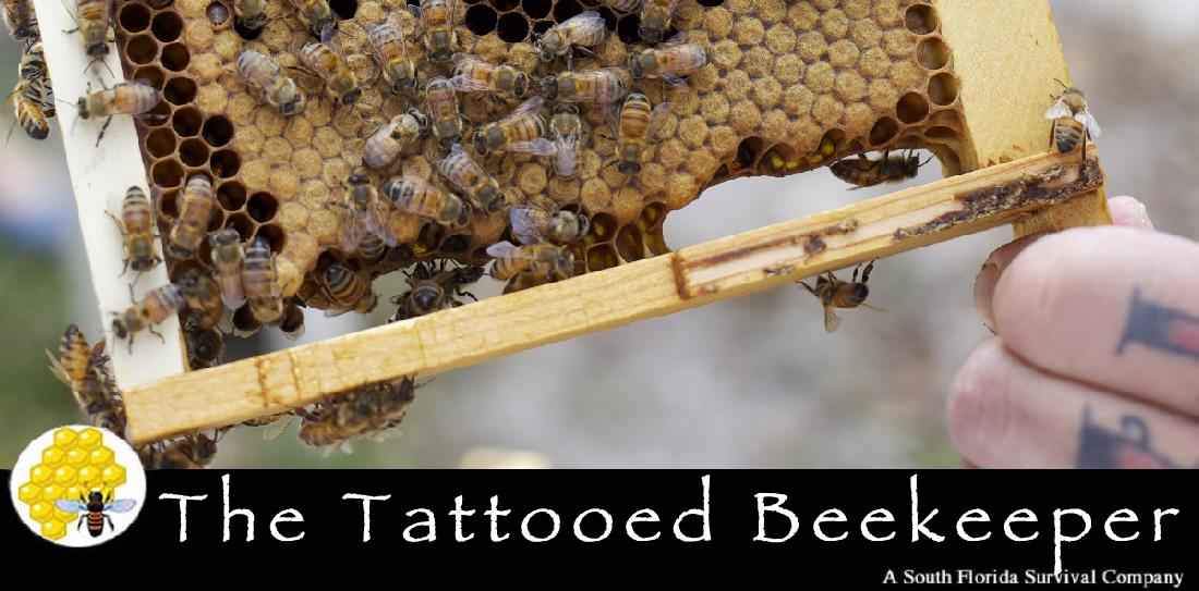 The Tattooed Beekeeper