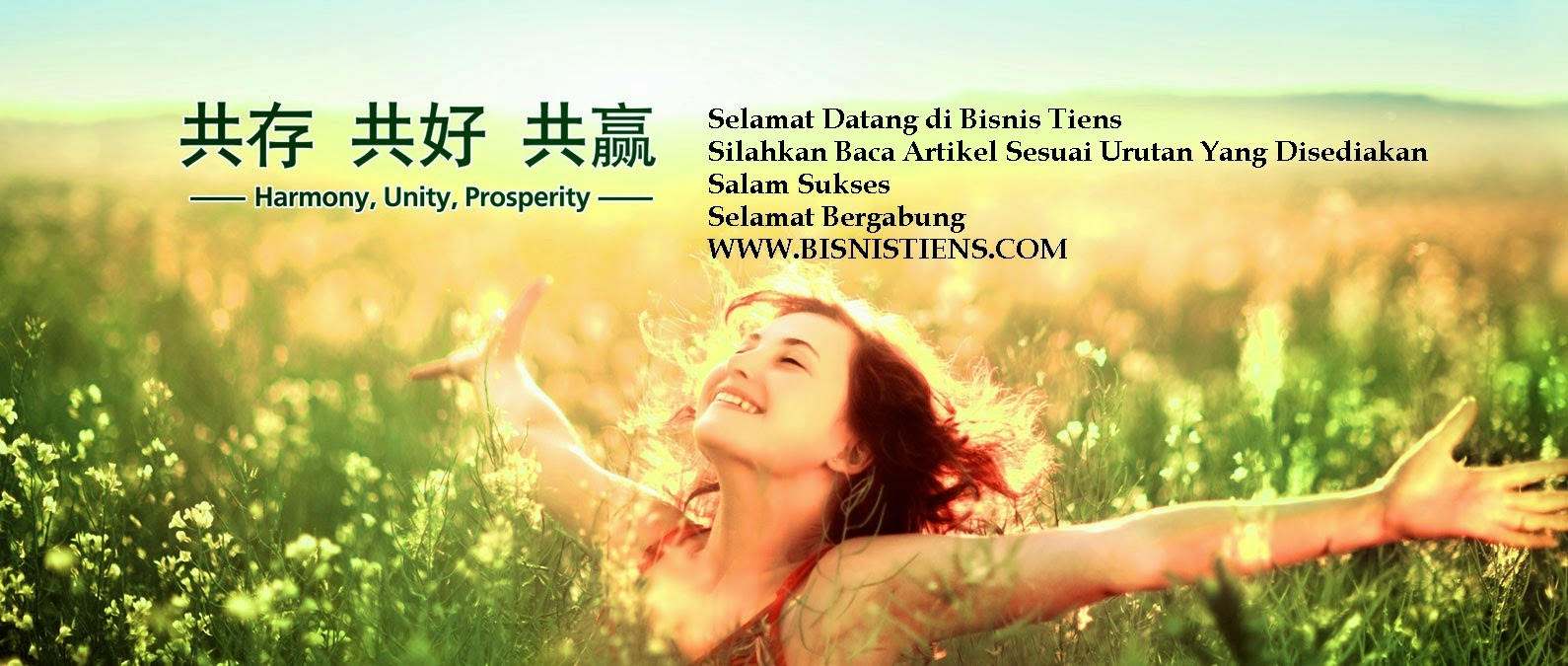 Bisnis Tiens MLM Multi Level Marketing Tianshi Bonus Besar Tianshi Indonesia