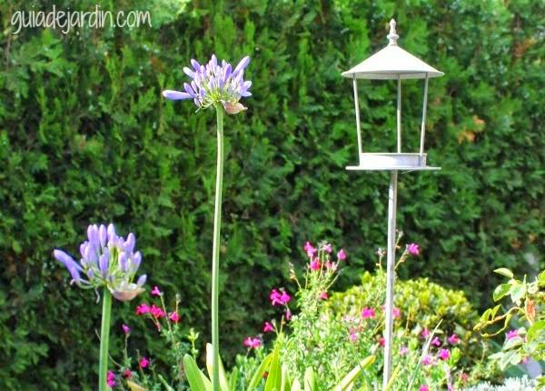 Casitas para p jaros refugio para el oto o guia de jardin - El jardin de lola ...