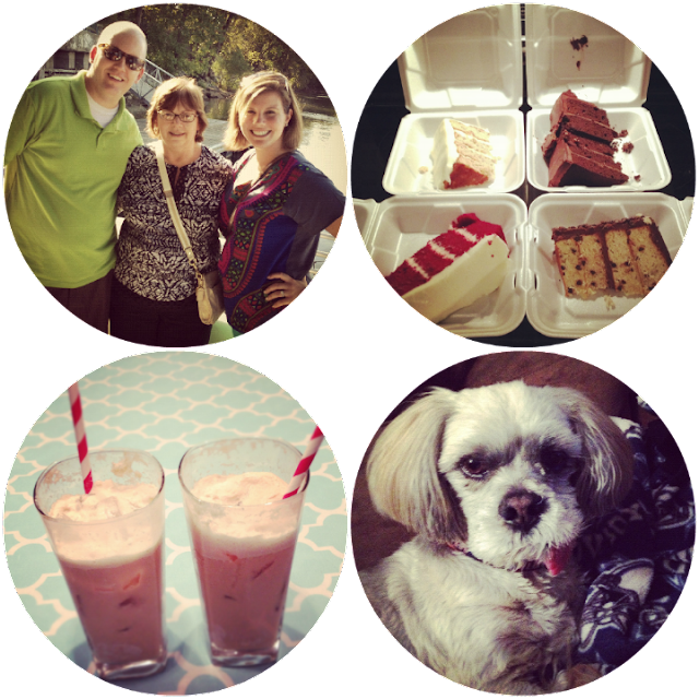 coke, floats, puppy, cake, friends