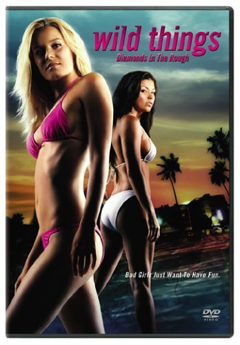 Poster Of (18+) Wild Things 3 (2005) 720p BluRay Dual Audio