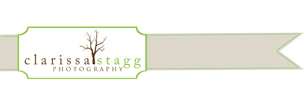 Clarissa Stagg Photography | Utah Portrait and Wedding Photography