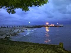 Pasang Laut Karang Jamuang