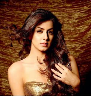 nikki galrani malayalam tamil movie actress image 002.jpg