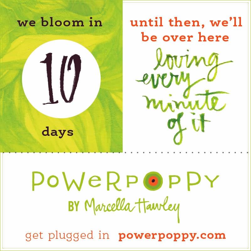 www.powerpoppy.com