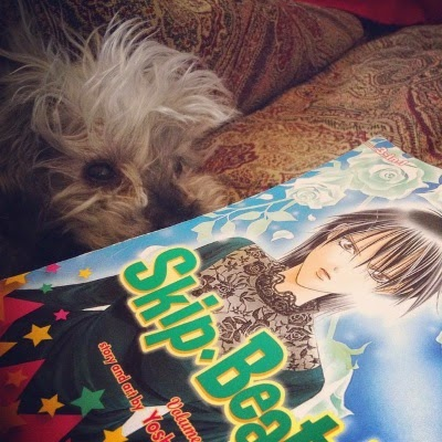 A trade paperback copy of a Skip Beat omnibus lays crossways across the image. Its cover features a Japanese girl with short black hair and a determined, angry expression on her face. She wears a green velvet dress with a black lace yoke. Murchie lurks behind the book.